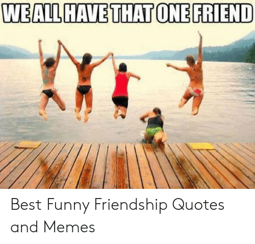 Weall Have That One Friend Best Funny Friendship Quotes And