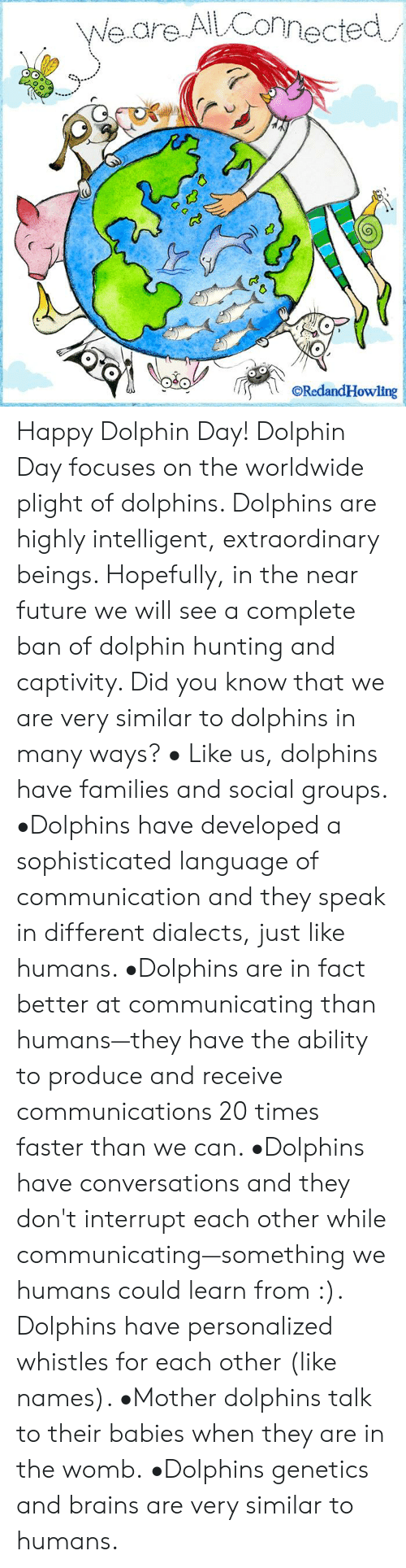 Brains, Future, and Memes: Weare AlLConnected  ORedandHowling Happy Dolphin Day!   Dolphin Day focuses on the worldwide plight of dolphins.  Dolphins are highly intelligent, extraordinary beings. Hopefully, in the near future we will see a complete ban of dolphin hunting and captivity.    Did you know that we are very similar to dolphins in many ways?    • Like us, dolphins have families and social groups.   •Dolphins have developed a sophisticated language of communication and they speak in different dialects, just like humans.    •Dolphins are in fact better at communicating than humans—they have the ability to produce and receive communications 20 times faster than we can.    •Dolphins have conversations and they don't interrupt each other while communicating—something we humans could learn from :).   Dolphins have personalized whistles for each other (like names).    •Mother dolphins talk to their babies when they are in the womb.  •Dolphins genetics and brains are very similar to humans.