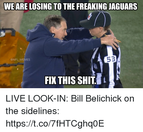 Bill Belichick, Football, and Memes: WEARE LOSING TO THE FREAKING JAGUARS  53  @NFL MEMES  FIX THIS SHIT. LIVE LOOK-IN: Bill Belichick on the sidelines: https://t.co/7fHTCghq0E