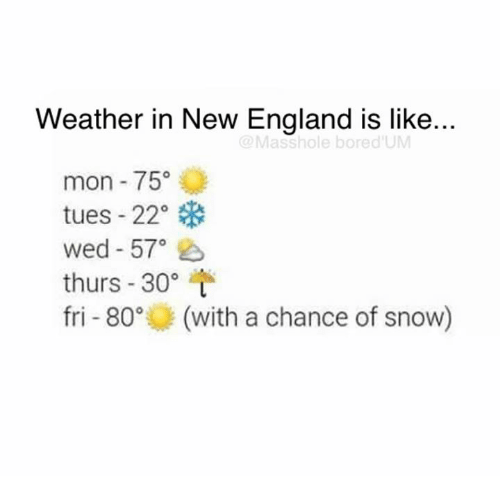 Memes, 🤖, and New England: Weather in New England is like..  Masshole bored UM  mon 75  tues 22°  wed 57°  thurs 30  fri 80° (with a chance of snow)