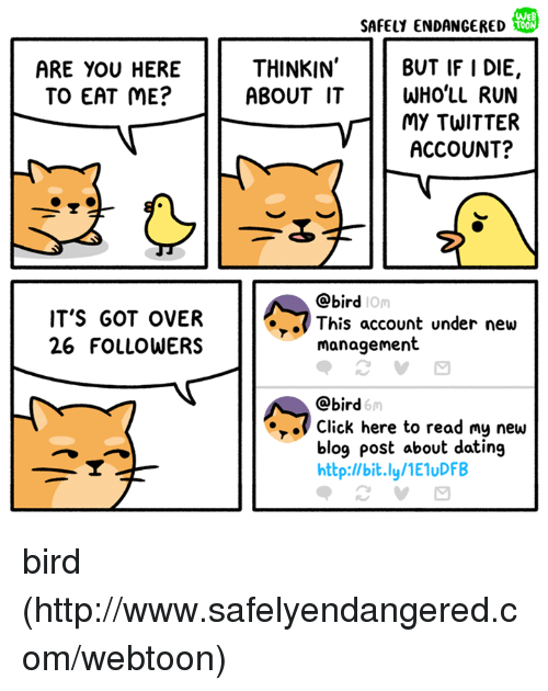 Click, Dating, and Memes: WeB  SAFELY ENDANGERED  THINKIN  BUT IF I DIE,  ABOUT IT WHO'LL RUN  MY TWITTER  ACCOUNT?  ARE YOU HERE  TO EAT ME?  @bird  IOm  IT'S GOT OVER  26 FOLLOWERS  .This account under new  management  @bird  6m  Click here to read my new  blog post about dating  http:l/bit.ly/1E1uDFB bird (http://www.safelyendangered.com/webtoon)