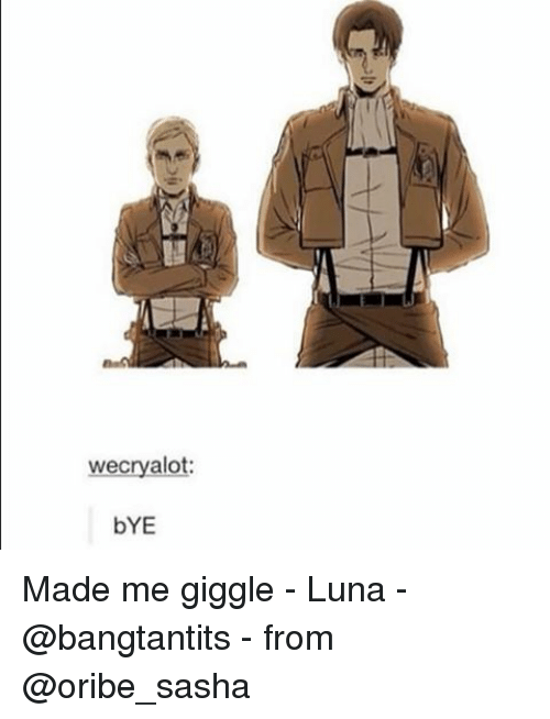 Wecryalo Bye Made Me Giggle Luna From Fandom Meme On Meme