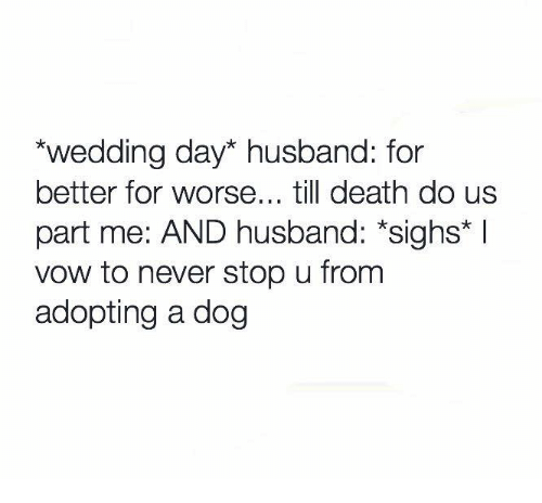 Relationships, Death, and Husband: wedding day* husband: for  better for worse... till death do us  part me: AND husband: *sighs*  vow to never stop u from  adopting a dog