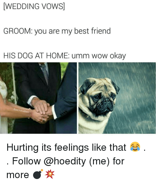 WEDDING VOWS GROOM You Are My Best Friend HIS DOG AT HOME Umm Wow