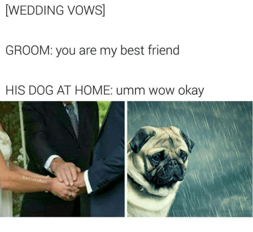 Best Friend Wow And Wedding Vows Groom You Are My