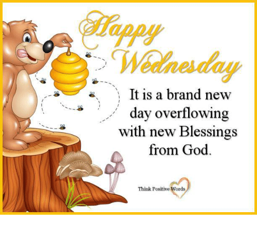 God, Memes, and Wednesday: Wednesday  It is a brand new  day overflowing  with new Blessings  from God  Think Positive Words