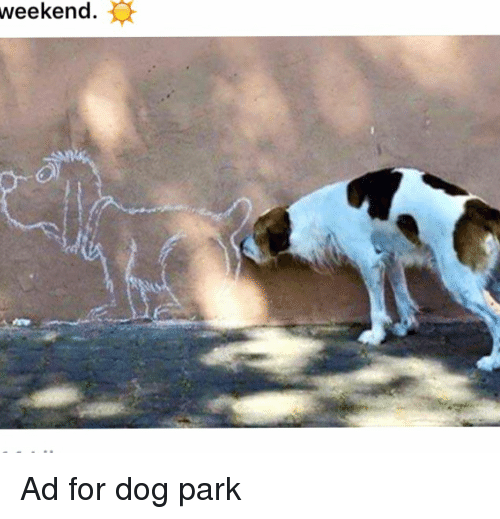 Weekend Ad for Dog Park | Funny Signs Meme on ME ME