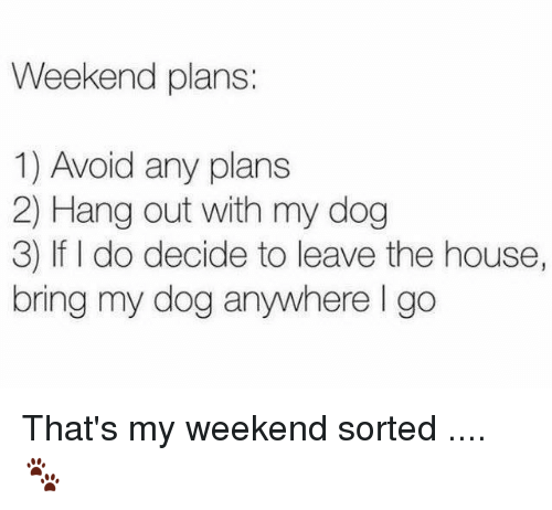 Memes, 🤖, and Weekend: Weekend plans:  1) Avoid any plans  2) Hang out with my dog  3) do decide to leave the house,  bring my dog anywhere go That's my weekend sorted .... 🐾