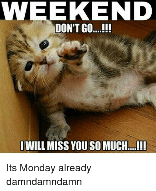 weekend-will-miss-you-so-much-i-its-monday-already-20335778.png