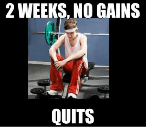 [Image: weeks-no-gains-quits-20610545.png]