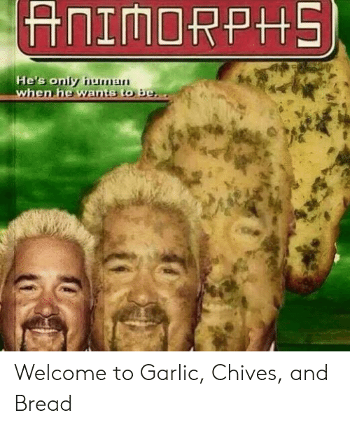 Reddit, Bread, and Garlic: Welcome to Garlic, Chives, and Bread