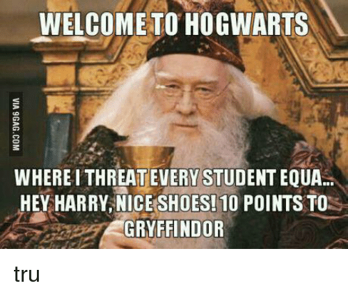 Gryffindor, Memes, and 🤖: WELCOME TO HOGWARTS  WHEREITHREATEVERY STUDENTEOUA..  HEY HARRY, NICE SHOES! 10 POINTS TO  GRYFFINDOR tru