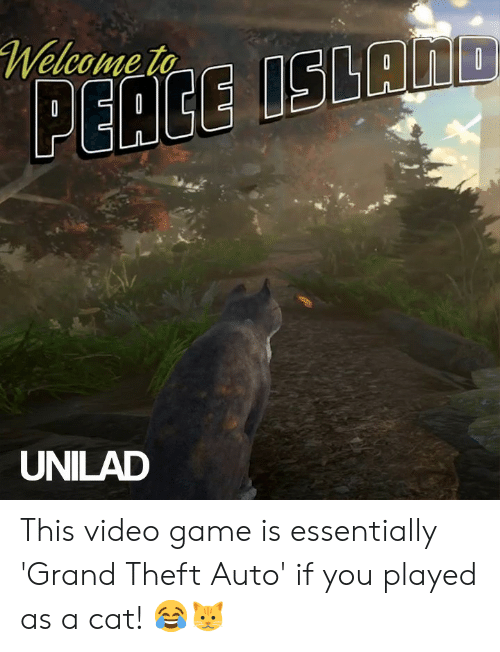 Dank, Game, and Video: Welcome to  ISLAND  PEACE  UNILAD This video game is essentially 'Grand Theft Auto' if you played as a cat! 😂🐱