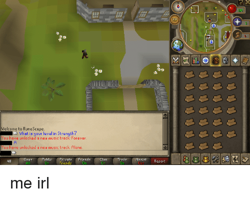 Welcome to runescape id what is your level in strength have