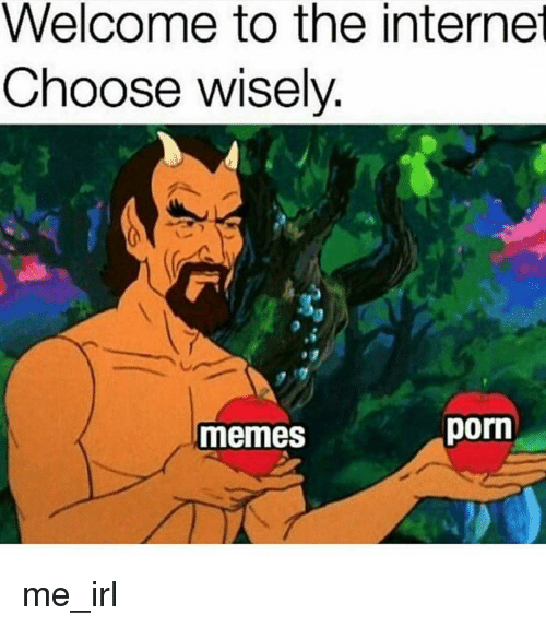 Memes, Porn, and Irl: Welcome to the interne  Choose wisely  memes  porn