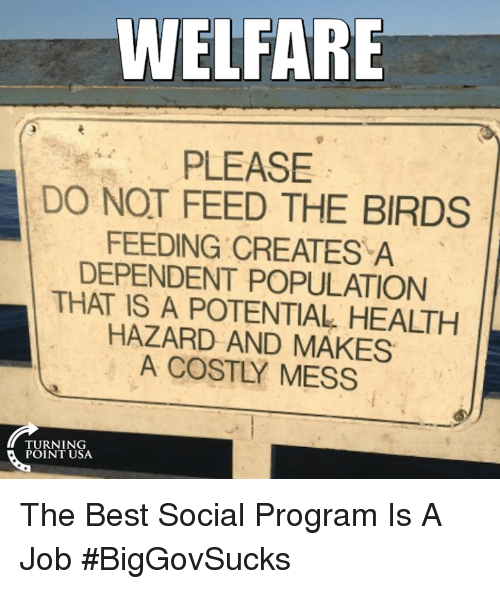the shrinking welfare state A population decline  even though its population has been shrinking since 1992-93  sweden built up an extensive welfare state from the 1930s and onward, .