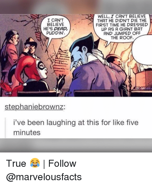 Memes, Dress, and Dresses: WELL, I CAN'T BELIEVE  I CAN'T  THAT HE DIDN'T DIE THE  BELIEVE  FIRST TIME HE DRESSED  HE'S DEAD  UP AS A GIANT BAT  PUDDIN',  A AND JUMPED OFF  THE ROOF.  Stephaniebrownz  i've been laughing at this for like five  minutes True 😂 | Follow @marvelousfacts