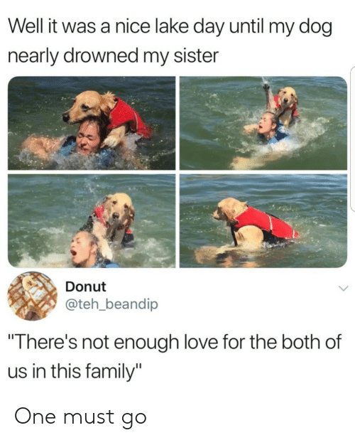 "Family, Love, and Nice: Well it was a nice lake day until my dog  nearly drowned my sister  Donut  @teh_beandip  ""There's not enough love for the both of  us in this family"" One must go"