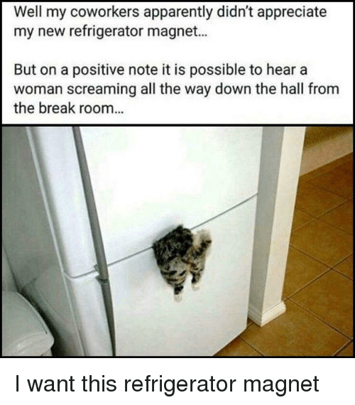 Apparently, Appreciate, and Break: Well my coworkers apparently didn't appreciate  my new refrigerator magnet...  But on a positive note it is possible to hear a  woman screaming all the way down the hall from  the break room... I want this refrigerator magnet