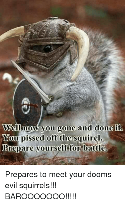 well now you gone and done you pissed off the 12590111 ✅ 25 best memes about evil squirrel evil squirrel memes