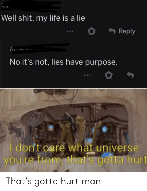 Life, Reddit, and Universe: Well shit, my life is a lie  Reply  No it's not, lies have purpose.  I don't care whạt universe  you're from, that's gotta hurt That's gotta hurt man