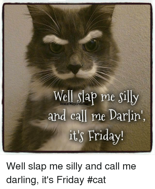 It's Friday, Memes, and 🤖: Well Slap me Silly  and call me Darlin',  its Friday! Well slap me silly and call me darling, it's Friday    #cat