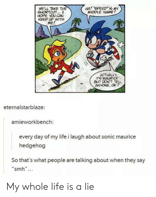 "Life, Smh, and Hedgehog: WE'LL TAKE THE  SHORTCUT... I  HOPE YOU CAN  KEEP UP WITH  ME!  MIDDLE NAME!  ACTUALLY  BUT DON'T TELL  ANYONE. Ok?  eternalstarblaze  amieworkbench:  every day of my life i laugh about sonic maurice  hedgehog  So that's what people are talking about when they say  ""smh""... My whole life is a lie"