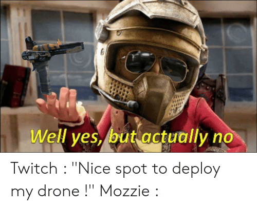 Well Yes but Actually No Twitch Nice Spot to Deploy My Drone