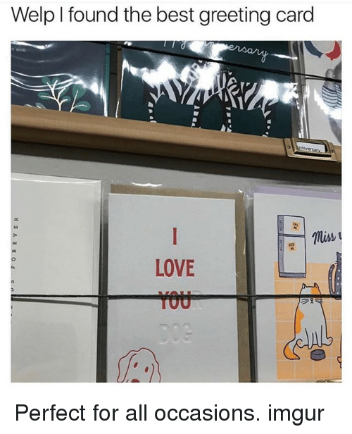 Welp i found the best greeting card love perfect for all occasions love memes and best welp i found the best greeting card love perfect m4hsunfo