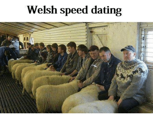 wales speed dating