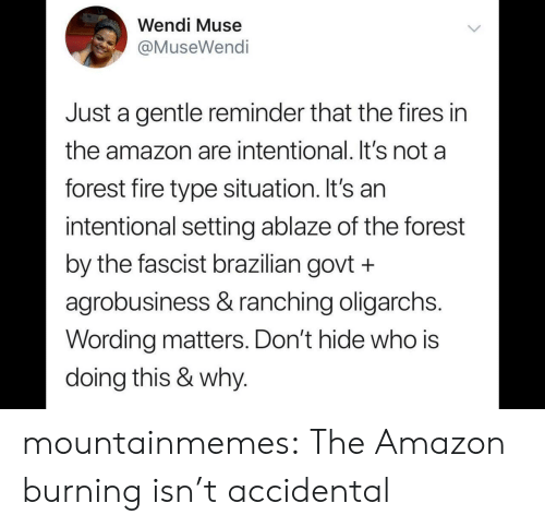 Amazon, Fire, and Tumblr: Wendi Muse  @MuseWendi  Just a gentle reminder that the fires in  the amazon are intentional. It's not a  forest fire type situation. It's an  intentional setting ablaze of the forest  by the fascist brazilian govt +  agrobusiness & ranching oligarchs.  Wording matters. Don't hide who is  doing this & why. mountainmemes:  The Amazon burning isn't accidental
