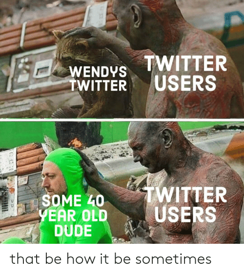 Dude, Twitter, and Wendys: WENDYS TWITTER  TWITTER USERS  TWITTER  SOME L0  EAR OLDUSERS  DUDE that be how it be sometimes