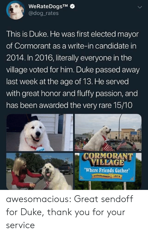 """Friends, Tumblr, and Thank You: WeRateDogsTM  @dog rates  This is Duke. He was first elected mayor  of Cormorant as a write-in candidate in  2014. In 2016, literally everyone in the  village voted for him. Duke passed away  last week at the age of 13. He served  with great honor and fluffy passion, and  has been awarded the very rare 15/10  CORMORANT  VILLAGE  """"Where Friends Gather  ESTABLISHED  1874 awesomacious:  Great sendoff for Duke, thank you for your service"""