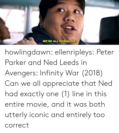 WE'RE ALL GONNA DIE Howlingdawn Ellenripleys Peter Parker and Ned