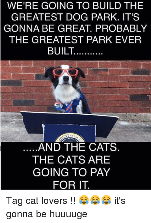 Build A Dog Park Cats Pay For