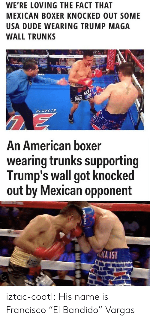 """Dude, Trunks, and Tumblr: WE'RE LOVING THE FACT THAT  MEXICAN BOXER KNOCKED OUT SOME  USA DUDE WEARING TRUMP MAGA  WALL TRUNKS   An American boxer  wearing trunks supporting  Trump's wall got knocked  out by Mexican opponent  ME A IST iztac-coatl: His name is Francisco """"El Bandido"""" Vargas"""