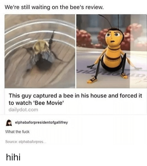 Bee Movie, Tumblr, and Reviews: We're still waiting on the bee's review.  This guy captured a bee in his house and forced it  to watch 'Bee Movie'  daily dot.com  elphabaforpresidentofgallifrey  What the fuck  Source: elphabaforpres hihi