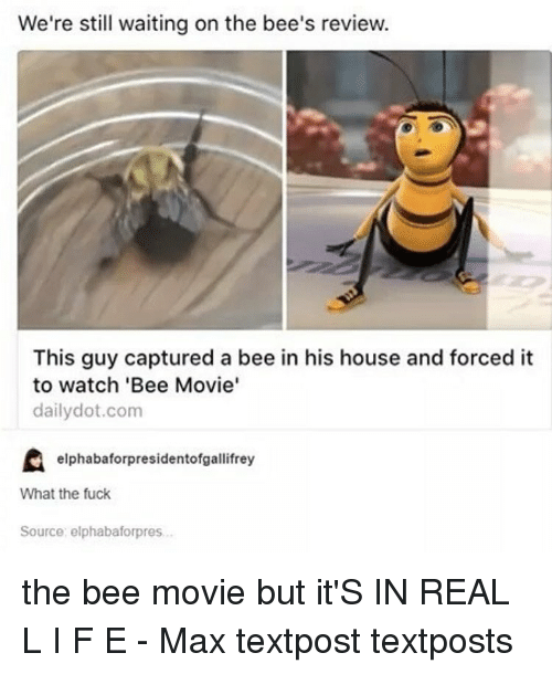 Bee Movie, Memes, and 🤖: We're still waiting on the bee's review.  This guy captured a bee in his house and forced it  to watch 'Bee Movie'  daily dot.com  elphabaforpresidentofgallifrey  What the fuck  Source: elphabaforpres. the bee movie but it'S IN REAL L I F E - Max textpost textposts