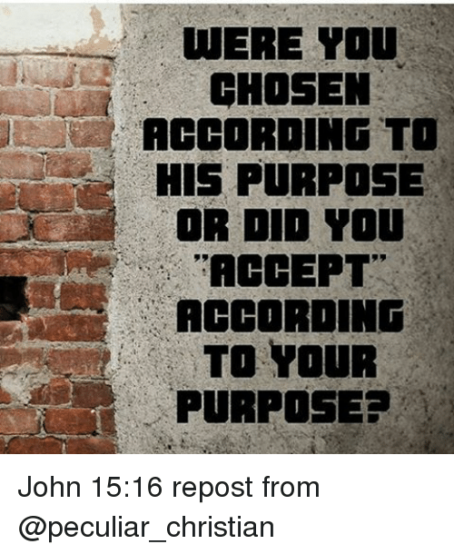 were you chosen according to his purpose or did you accept according