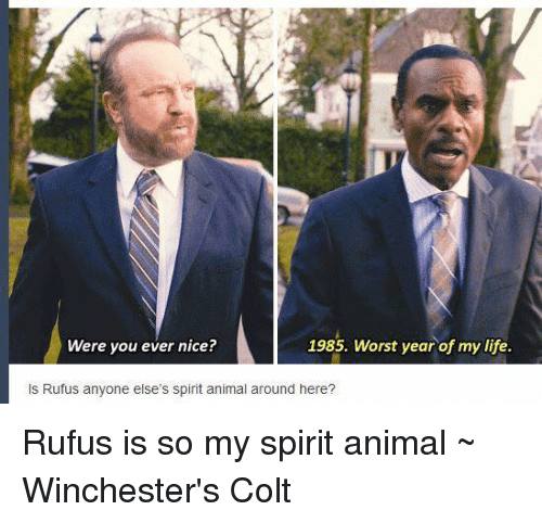 Animals, Memes, and Animal: Were you ever nice?  1985. Worst year of mylife.  ls Rufus anyone else's spirit animal around here? Rufus is so my spirit animal ~ Winchester's Colt