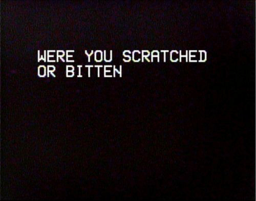 Bitten, You, and Were: WERE YOU SCRATCHED  OR BITTEN