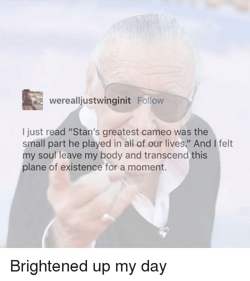 "Soul, Cameo, and Day: werealljustwinginit Follow  I just read ""Stan's greatest cameo was the  small part he played in all of our lives."" And I felt  my soul leave my body and transcend this  plane of existence for a moment. Brightened up my day"