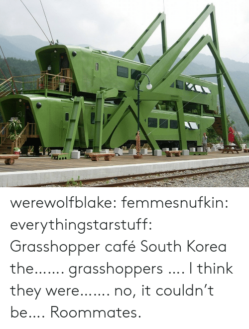 Target, Tumblr, and Blog: werewolfblake: femmesnufkin:  everythingstarstuff:   Grasshopper café South Korea the……. grasshoppers …. I think they were……. no, it couldn't be….   Roommates.