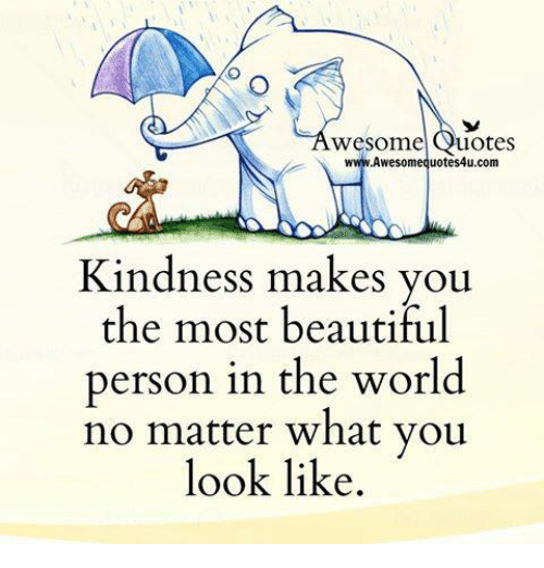 Memes, 🤖, and  Most Beautiful: wesome  uotes  Awesome quotes4u.com  Kindness makes you  the most beautiful  person in the world  no matter what you  look like