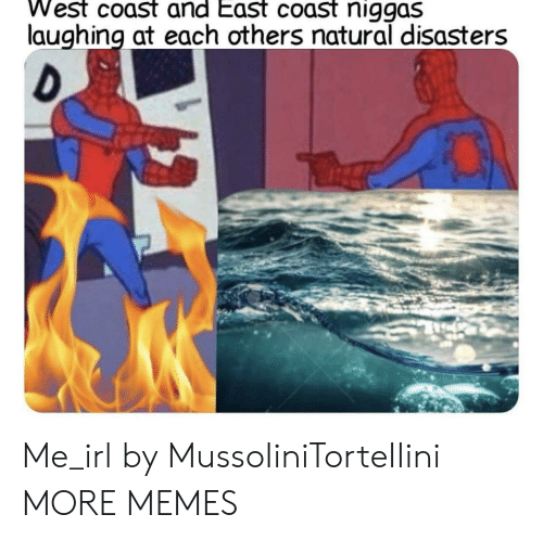 Dank, Memes, and Target: West coast and East coast niggas  laughing at each others natural disasters Me_irl by MussoIiniTorteIIini MORE MEMES