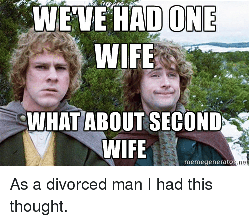 Meme, Memes, and Divorce: WEVE HAD ONE  WIFE  WHAT ABOUT SECOND  WIFE  meme generato As a divorced man I had this thought.