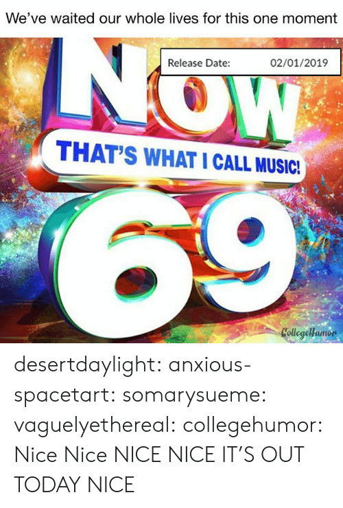 Tumblr, Blog, and Date: We've waited our whole lives for this one moment  Release Date:  02/01/2019  THAT'S WHAT I CALL MUSICI  CollegeHamor desertdaylight:  anxious-spacetart:  somarysueme:  vaguelyethereal:  collegehumor: Nice  Nice  NICE  NICE  IT'S OUT TODAY NICE