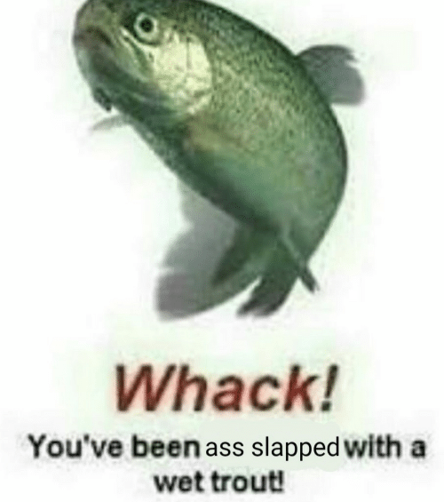 Been, Wet, and Trout: Whack!  You've been ass slapped with a  wet trout!