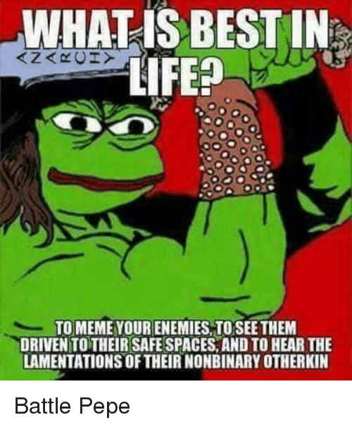 Meme, Best, and Pepe: WHALIS BEST IN  TO MEME YOUR ENEMIES,TOSEE THEM  DRIVEN TO THEIR SAFE SPACES, AND TO HEAR THE  LAMENTATIONS OF THEIR NONBINARY OTHERKIN