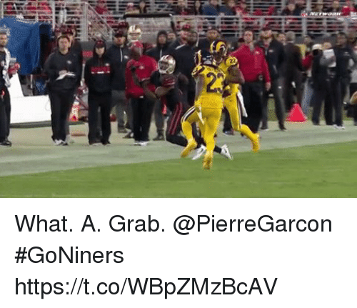 Memes, 🤖, and What: What. A. Grab. @PierreGarcon #GoNiners https://t.co/WBpZMzBcAV